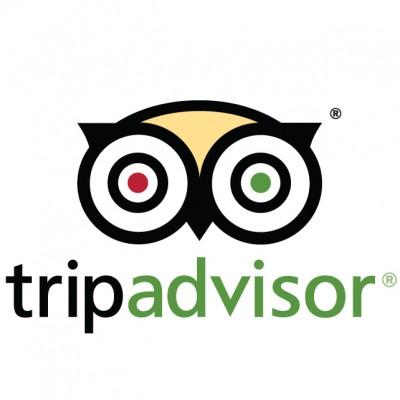 TripAdvisor-Logo-Font